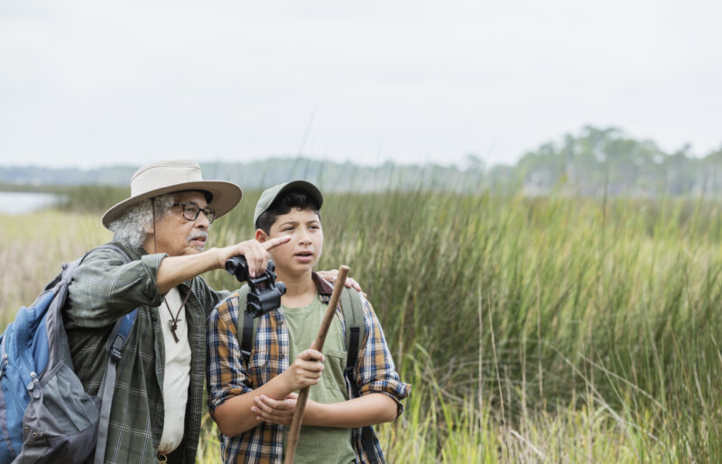 A man holding binoculars stands with a boy in a wetland and points to something in the distance.