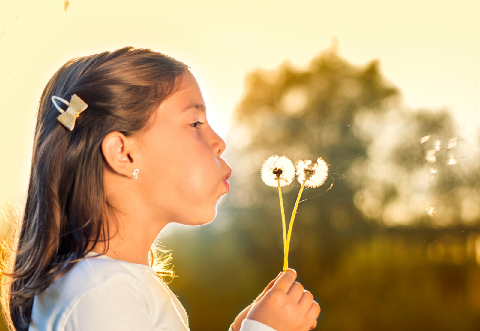 A young person blows the seeds off of a fluffy dandelion