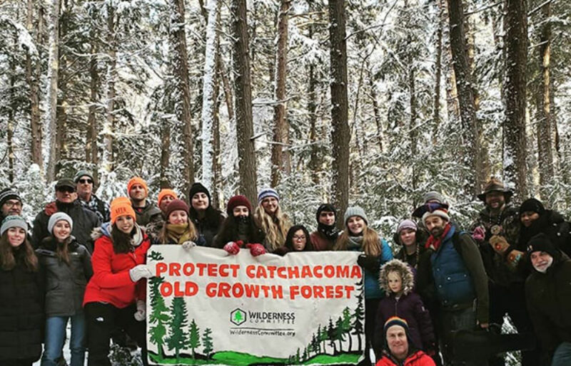 A group of people in a snowy clearing in Catchacoma forest, holding a sign urging old-growth protection.