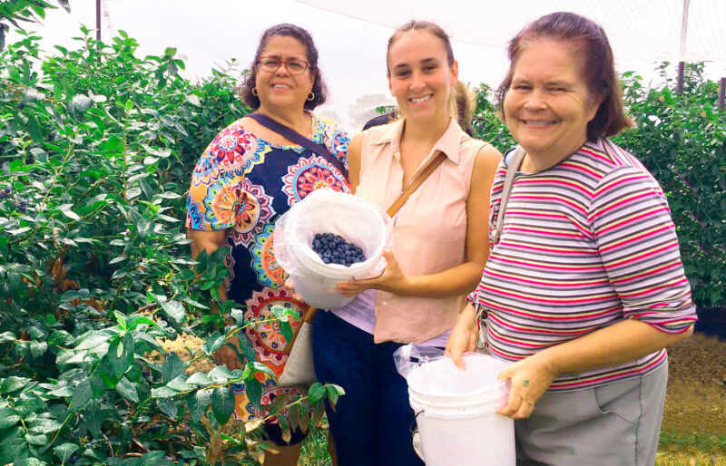 All smiles picking blueberries