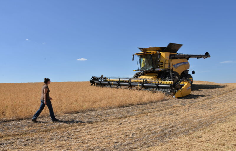 Student walking towards New Holland combine in field near Vermilion.