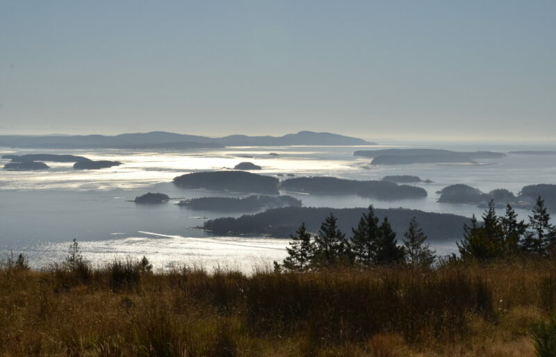A glimpse of these special islands of the Salish Sea