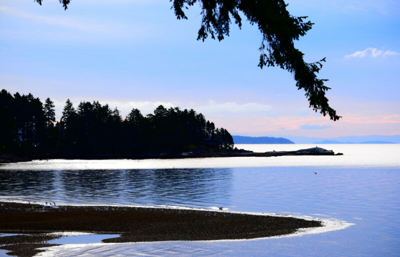 Representing the beauty of the islands of the Salish Sea