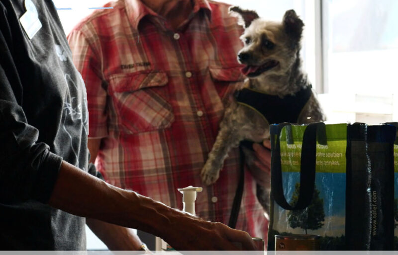 For the love of animals: Man and dog get pet food from BC SPCA staff