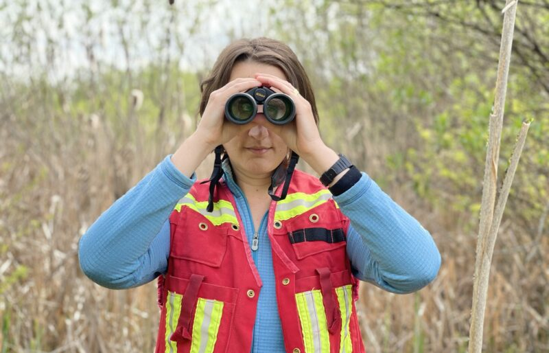 Keeping an eye on the species at risk